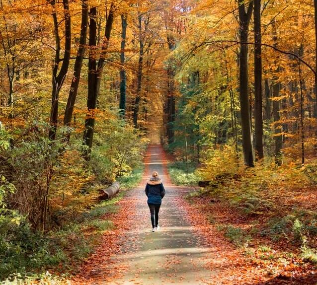 jak wzmocnić odporność - aktywność fizyczna spacer